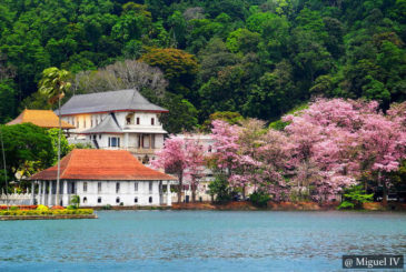 Bere Lake Kandy