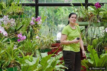 Peradeniya Botanical Garden Sri Lanka