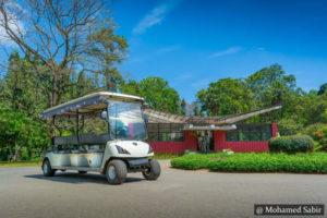 Peradeniya Garden - Kandy