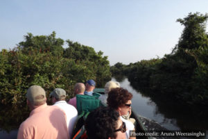Muthurajawela Marsh - Sri Lanka