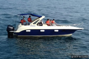 Hire a speed Boat Sri Lanka