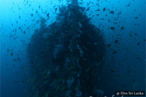 SS Worcestershire - Scuba Dive Site - Colombo