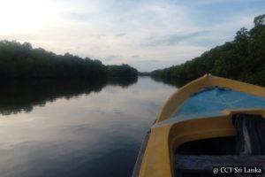 Kokkilai Lagoon