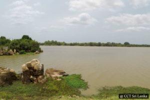 Paddle With Crocodiles Trincomalee