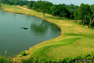 Golfing in Trincomalee