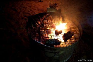 Night camping - in Gangewardiya and in Kalpitiya islands
