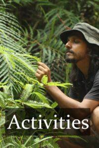 Holiday Activities in Sri Lanka