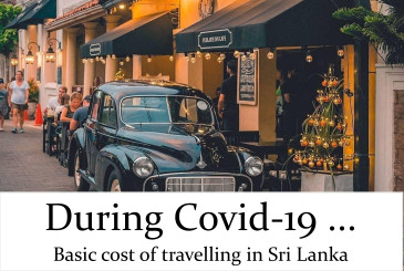 Travel during Covid-19